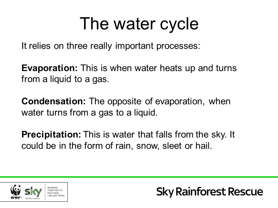 The water cycle It relies on three really important processes: Evaporation: This is when water heats up and turns from a liquid to a gas. Condensation