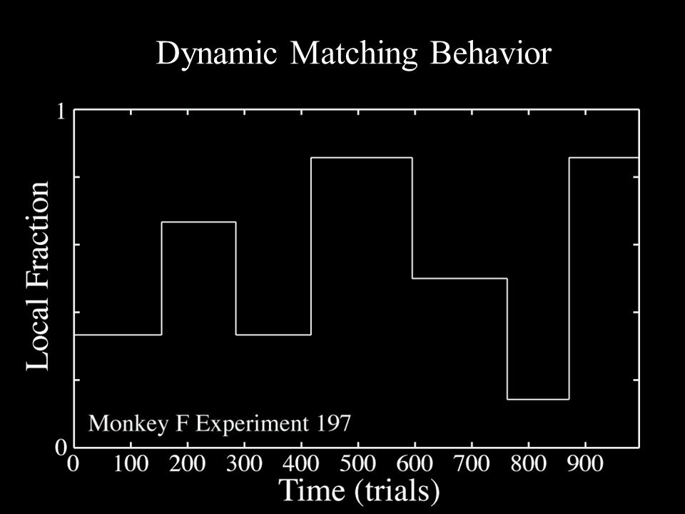 Dynamic Matching Behavior