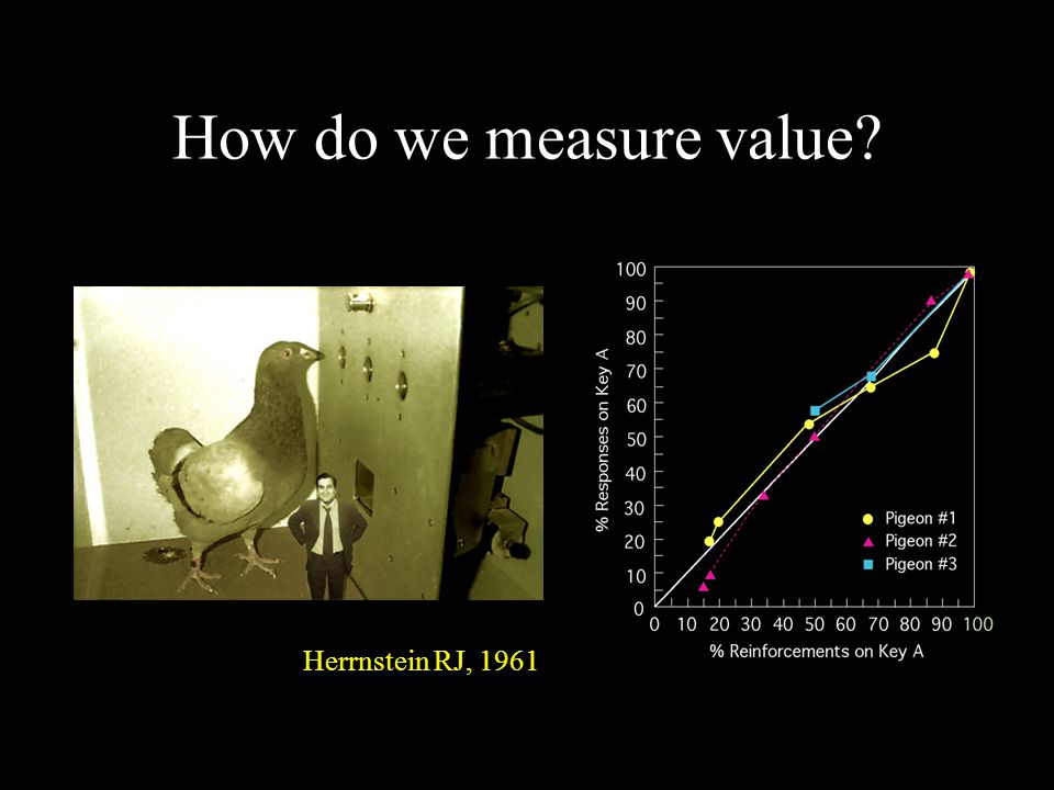 How do we measure value? Herrnstein RJ, 1961