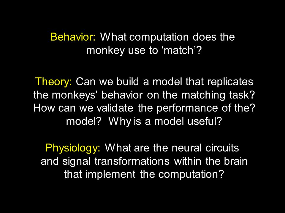 Behavior: What computation does the monkey use to 'match'.