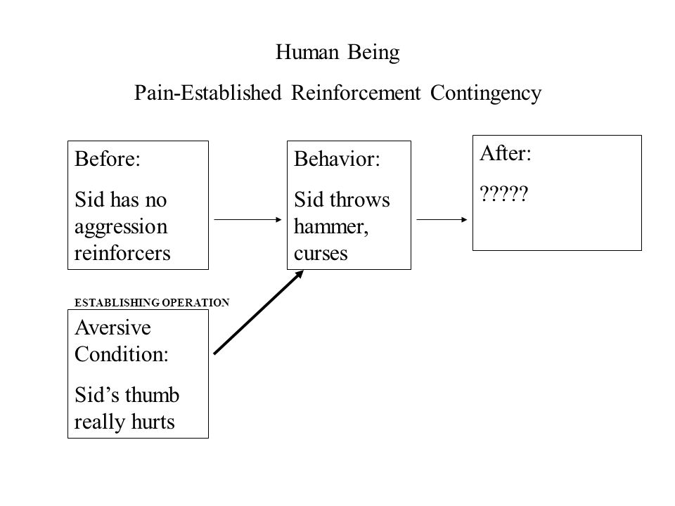Human Being Pain-Established Reinforcement Contingency Before: Sid has no aggression reinforcers After: .