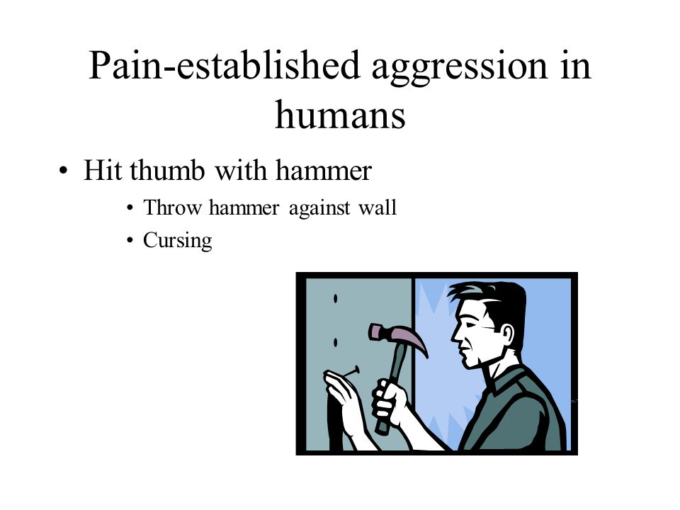 Pain-established aggression in humans Hit thumb with hammer Throw hammer against wall Cursing