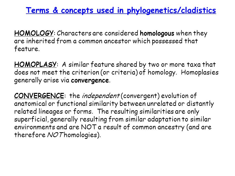 HOMOLOGY: Characters are considered homologous when they are inherited from a common ancestor which possessed that feature. HOMOPLASY: A similar featu