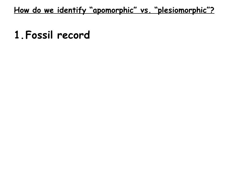 1.Fossil record