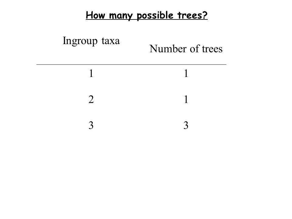 How many possible trees Ingroup taxa Number of trees 11 21 33