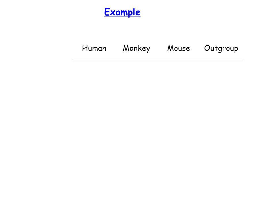 Example HumanMonkeyMouseOutgroup
