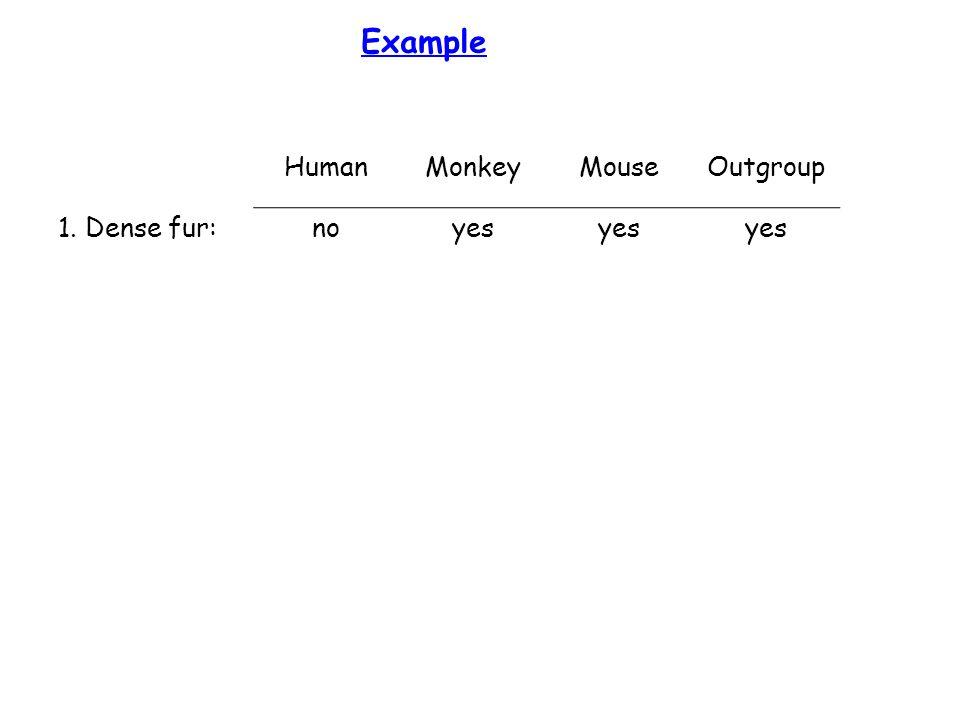 Example HumanMonkeyMouseOutgroup 1. Dense fur:noyes