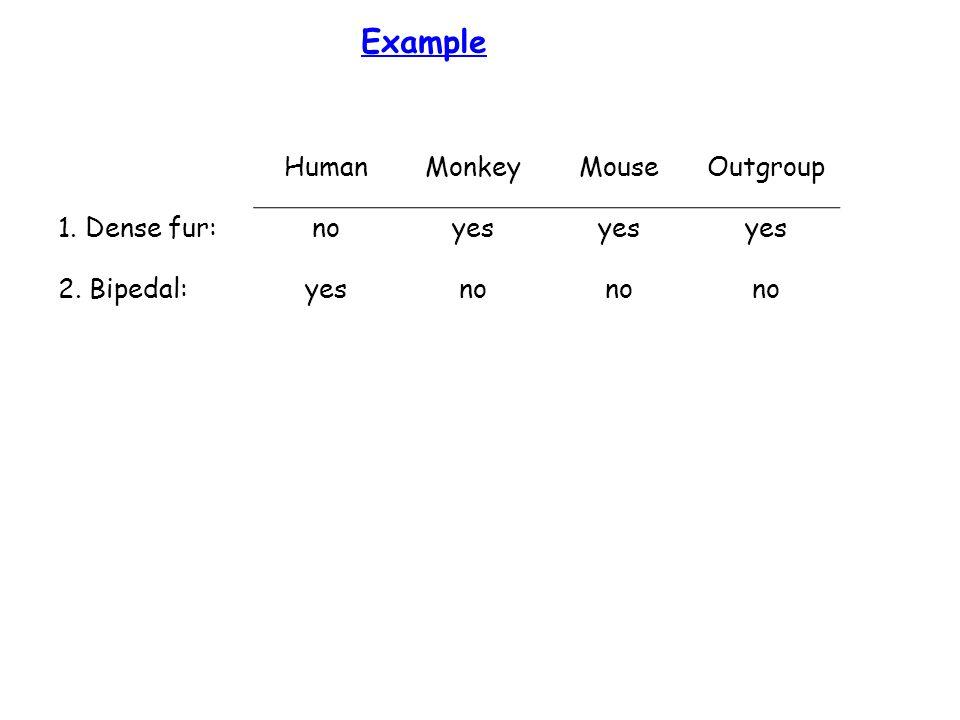 Example HumanMonkeyMouseOutgroup 1. Dense fur:noyes 2. Bipedal:yesno