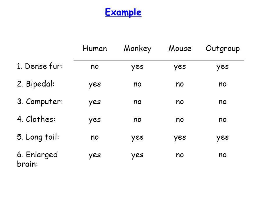 Example HumanMonkeyMouseOutgroup 1. Dense fur:noyes 2.
