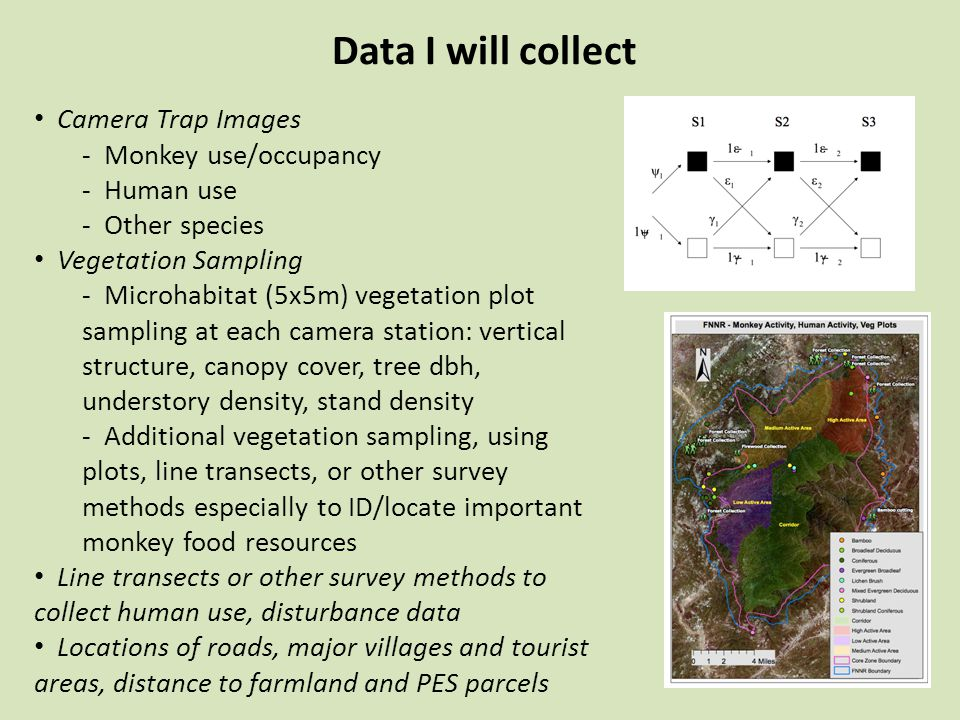 Data I will collect Camera Trap Images - Monkey use/occupancy - Human use - Other species Vegetation Sampling - Microhabitat (5x5m) vegetation plot sampling at each camera station: vertical structure, canopy cover, tree dbh, understory density, stand density - Additional vegetation sampling, using plots, line transects, or other survey methods especially to ID/locate important monkey food resources Line transects or other survey methods to collect human use, disturbance data Locations of roads, major villages and tourist areas, distance to farmland and PES parcels