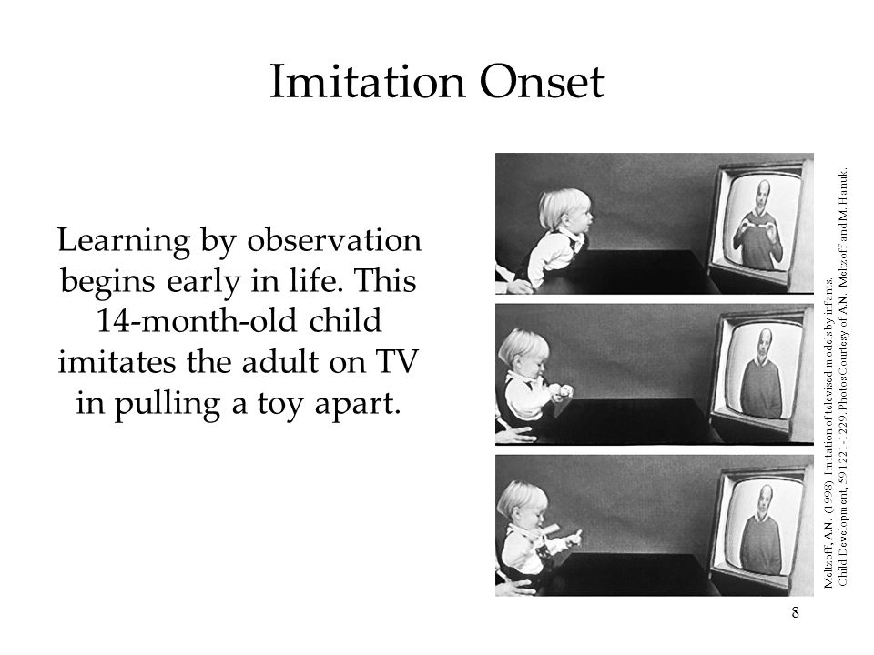 8 Imitation Onset Learning by observation begins early in life. This 14-month-old child imitates the adult on TV in pulling a toy apart. Meltzoff, A.N