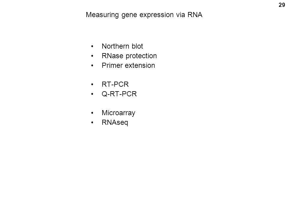 29 Measuring gene expression via RNA Northern blot RNase protection Primer extension RT-PCR Q-RT-PCR Microarray RNAseq