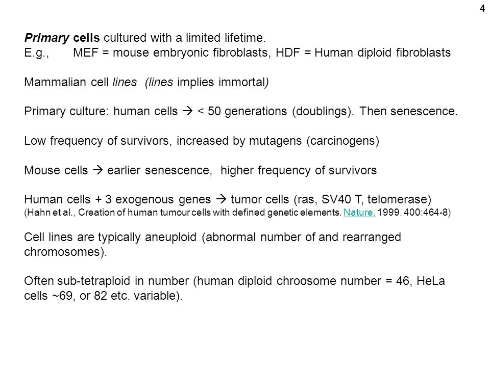 4 Primary cells cultured with a limited lifetime. E.g., MEF = mouse embryonic fibroblasts, HDF = Human diploid fibroblasts Mammalian cell lines (lines