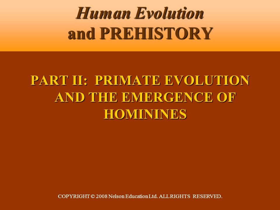 COPYRIGHT © 2008 Nelson Education Ltd. ALL RIGHTS RESERVED. Human Evolution and PREHISTORY PART II: PRIMATE EVOLUTION AND THE EMERGENCE OF HOMININES