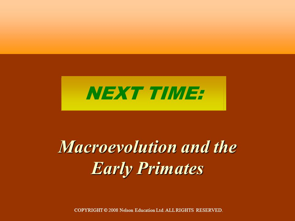 COPYRIGHT © 2008 Nelson Education Ltd. ALL RIGHTS RESERVED. NEXT TIME: Macroevolution and the Early Primates