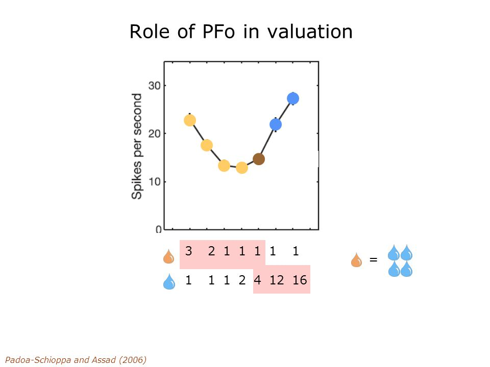 Role of PFo in valuation 218218 114114 122122 144144 1 12 1 16 Chosen Value : Padoa-Schioppa and Assad (2006) 3 1 12 =