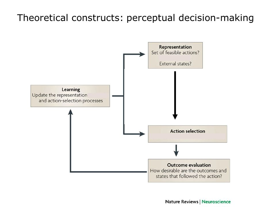 Clinical implications: delay-based decision-making Impulsive decisions occur in: –substance abusers (e.g.