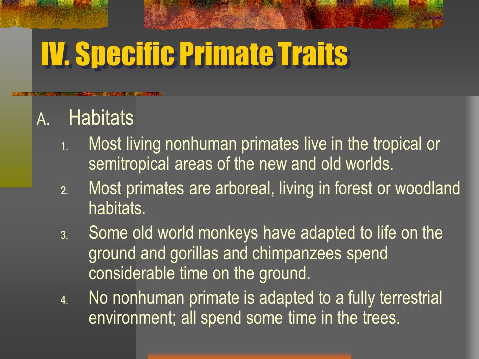 IV. Specific Primate Traits A. Habitats 1.