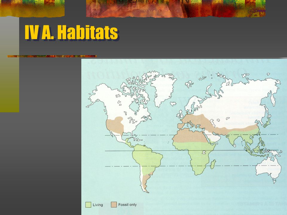 IV A. Habitats