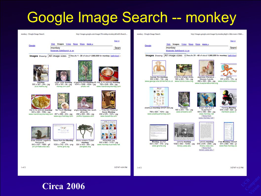 UCB Computer Vision Google Image Search -- monkey