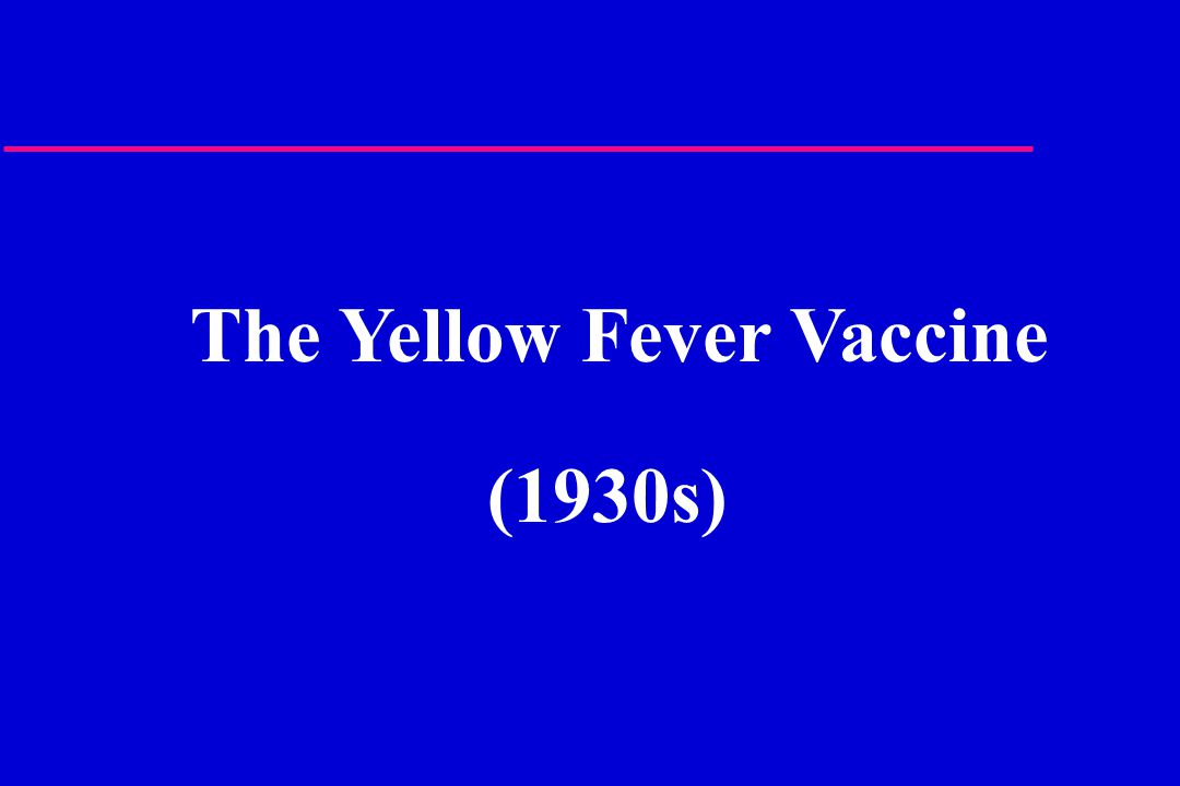 The Yellow Fever Vaccine (1930s)