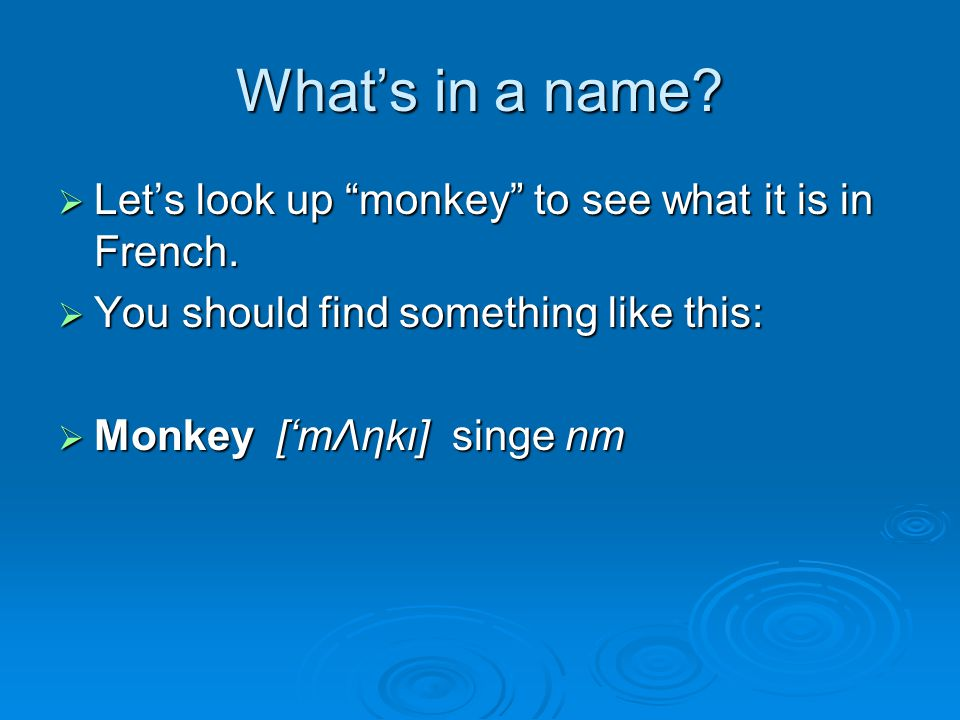 What's in a name.  Let's look up monkey to see what it is in French.