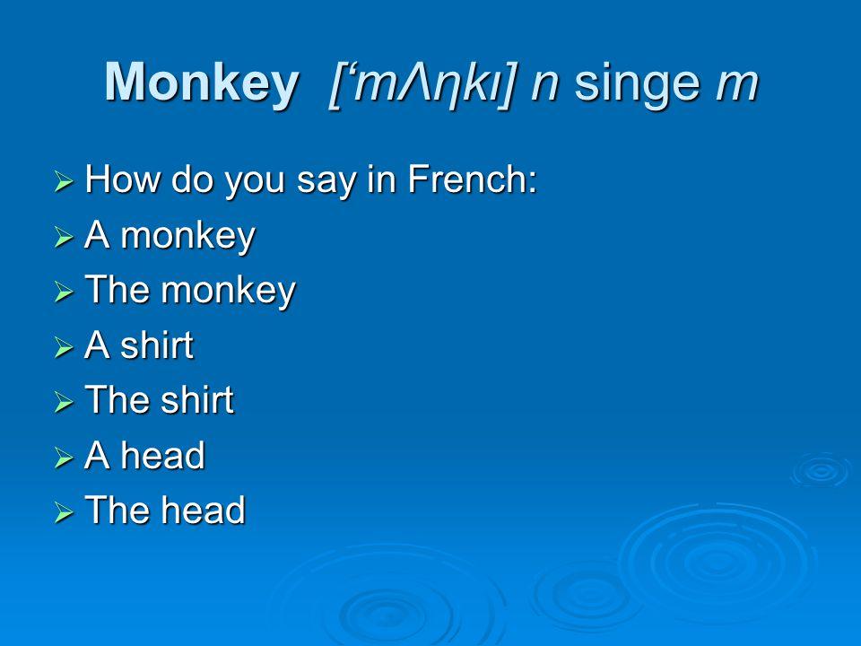 Monkey ['mΛηkι] n singe m  How do you say in French:  A monkey  The monkey  A shirt  The shirt  A head  The head