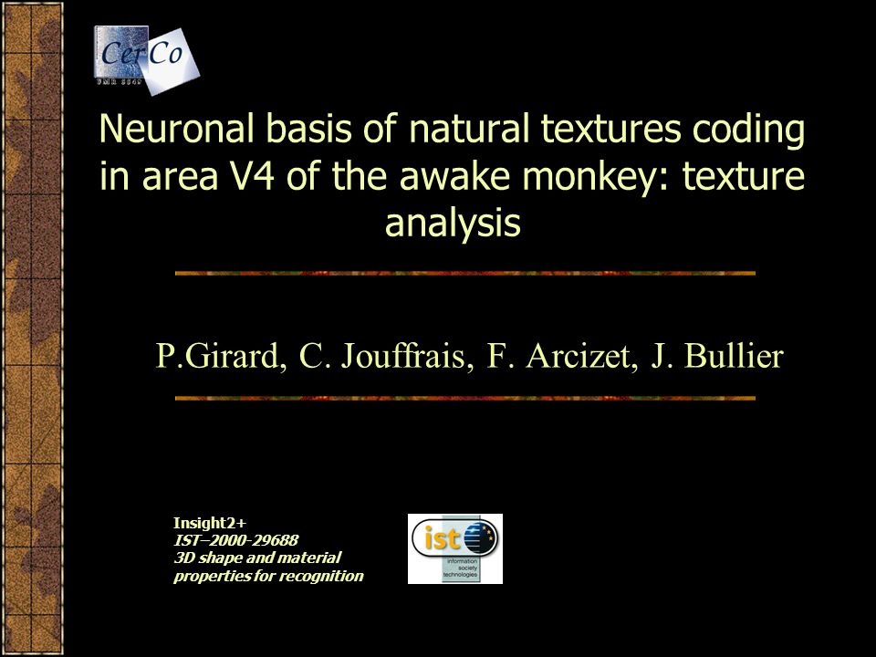 Neuronal basis of natural textures coding in area V4 of the awake monkey: texture analysis P.Girard, C.