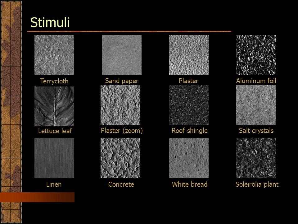 Stimuli Terrycloth Sand paper PlasterAluminum foil Salt crystalsRoof shinglePlaster (zoom) Lettuce leaf Linen ConcreteWhite bread Soleirolia plant