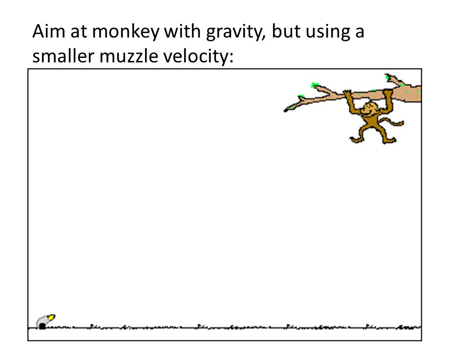 Aim at monkey with gravity: