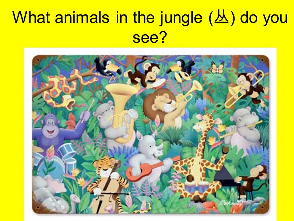 What animals in the jungle ( 丛 ) do you see?
