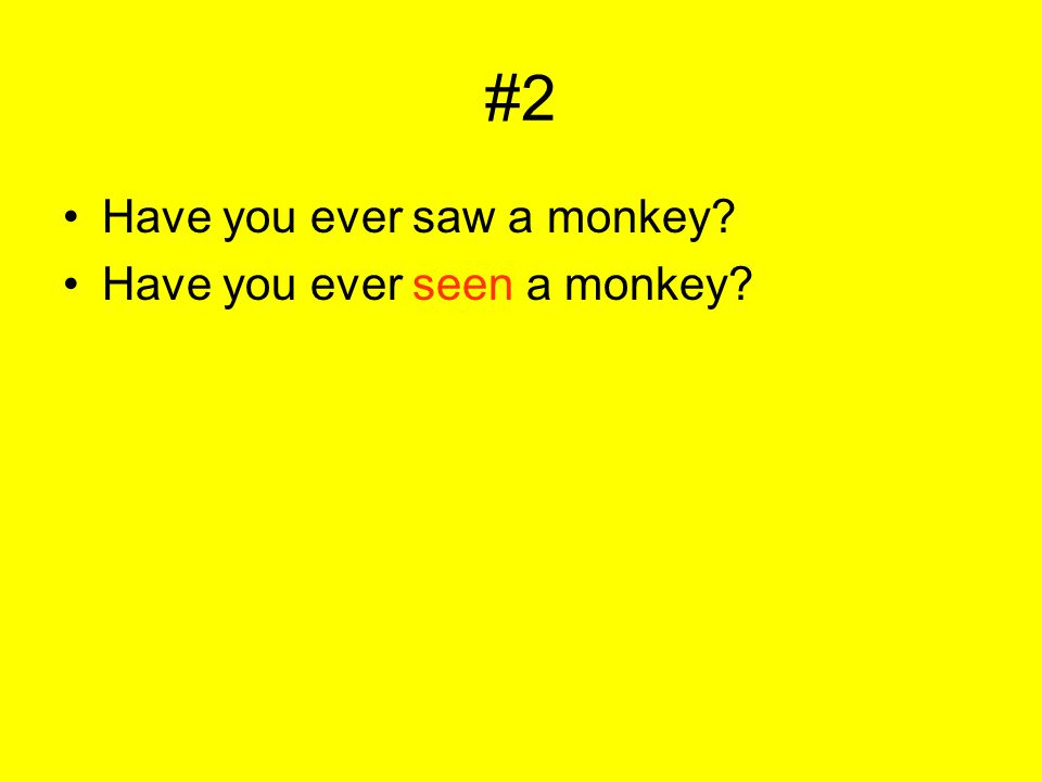 #2 Have you ever saw a monkey? Have you ever seen a monkey?