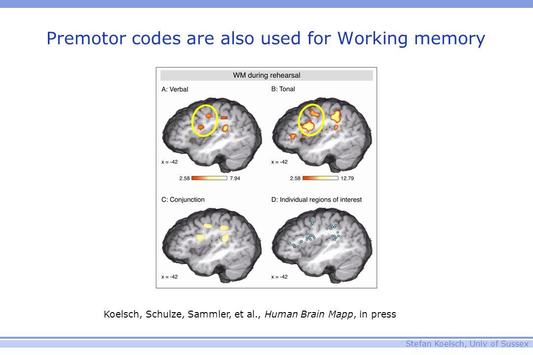 Stefan Koelsch, Univ of Sussex Premotor codes are also used for Working memory Koelsch, Schulze, Sammler, et al., Human Brain Mapp, in press