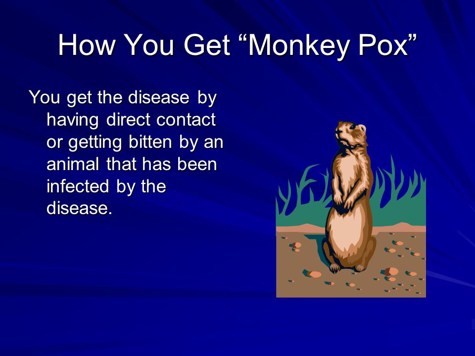 How You Get Monkey Pox You get the disease by having direct contact or getting bitten by an animal that has been infected by the disease.