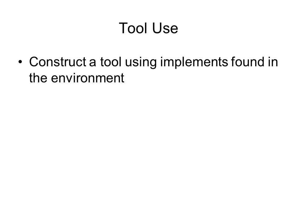 Tool Use Construct a tool using implements found in the environment
