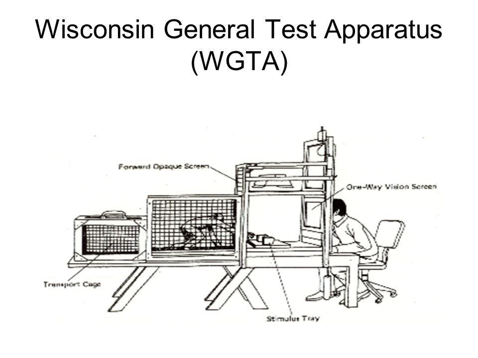 Wisconsin General Test Apparatus (WGTA)