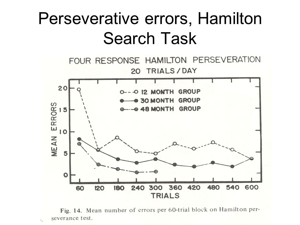 Perseverative errors, Hamilton Search Task