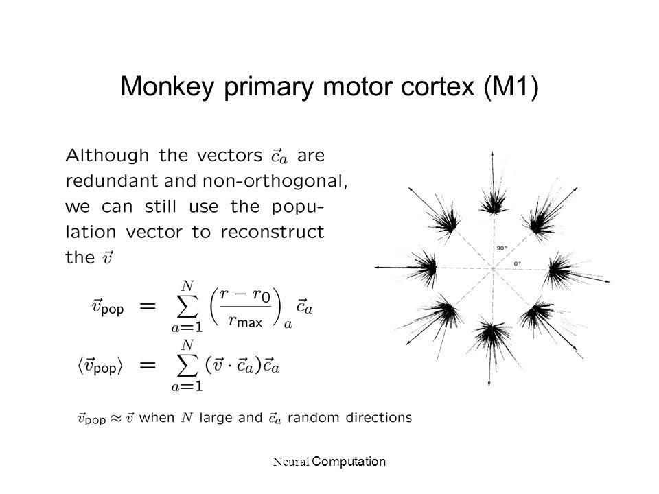 Neural Computation Monkey primary motor cortex (M1)