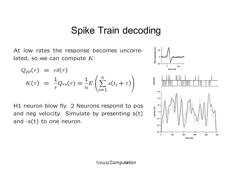 Neural Computation Spike Train decoding