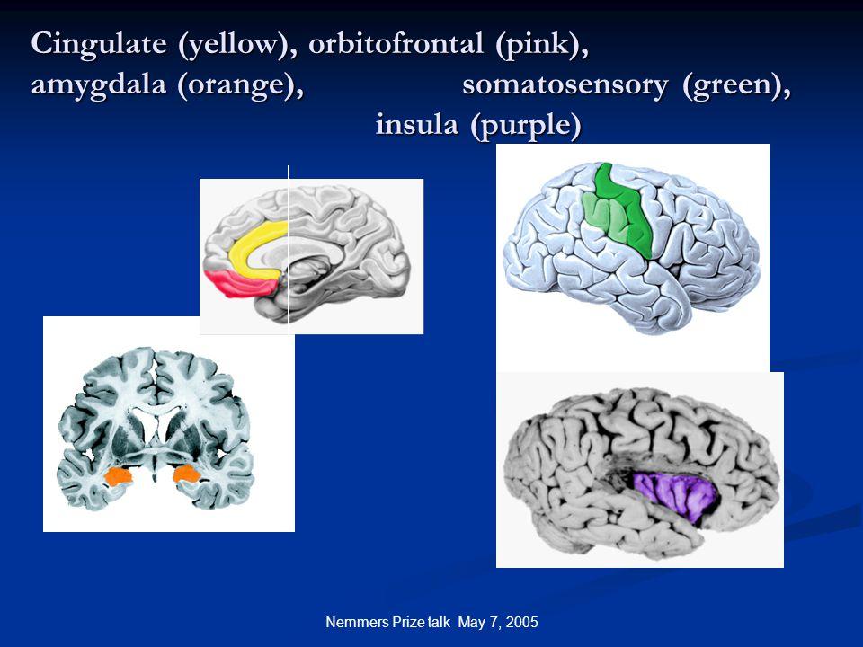 Nemmers Prize talk May 7, 2005 Cingulate (yellow), orbitofrontal (pink), amygdala (orange), somatosensory (green), insula (purple)