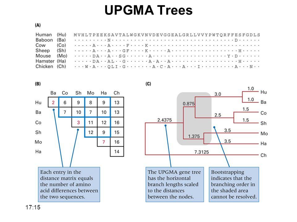 UPGMA Trees 17:17