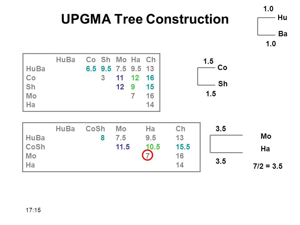 HuBaCoShMoHaCh HuBa87.59.513 CoSh11.510.515.5 Mo716 Ha14 HuBaCoShMoHaCh HuBa6.59.57.59.513 Co3111216 Sh12915 Mo716 Ha14 Hu Ba 1.0 Co Sh 7/2 = 3.5 1.5 1.0 1.5 Mo Ha 3.5 UPGMA Tree Construction 17:17