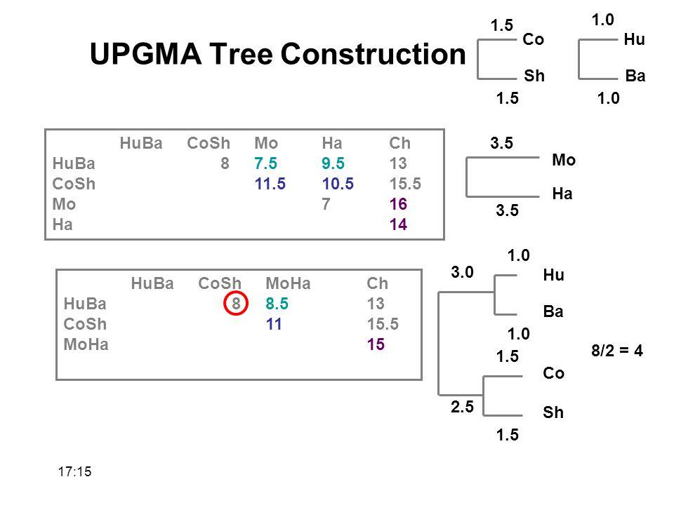 HuBaCoShMoHaCh HuBa87.59.513 CoSh11.510.515.5 Mo716 Ha14 Hu Ba 1.0 Co Sh 1.5 1.01.5 Mo Ha 3.5 HuBaCoShMoHaCh HuBa88.513 CoSh1115.5 MoHa15 8/2 = 4 Hu Ba 1.0 Co Sh 1.5 3.0 2.5 UPGMA Tree Construction 17:17