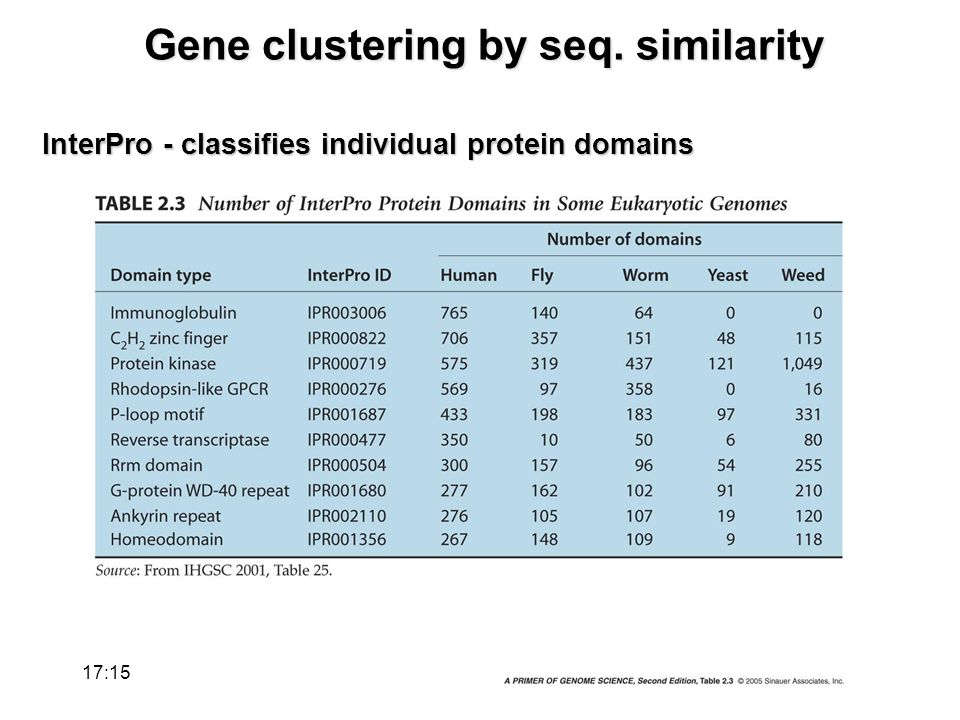 Gene clustering by seq. similarity InterPro - classifies individual protein domains 17:17