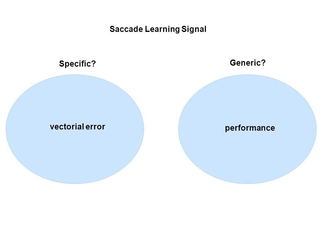 performance vectorial error Saccade Learning Signal Specific? Generic?