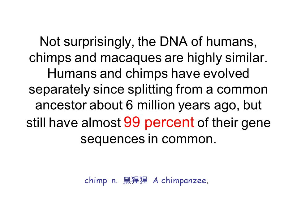 Not surprisingly, the DNA of humans, chimps and macaques are highly similar.