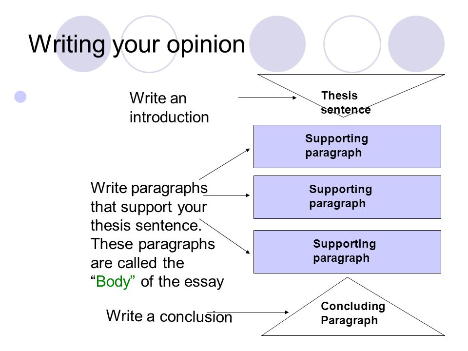 What is your opinion about doing thesis?