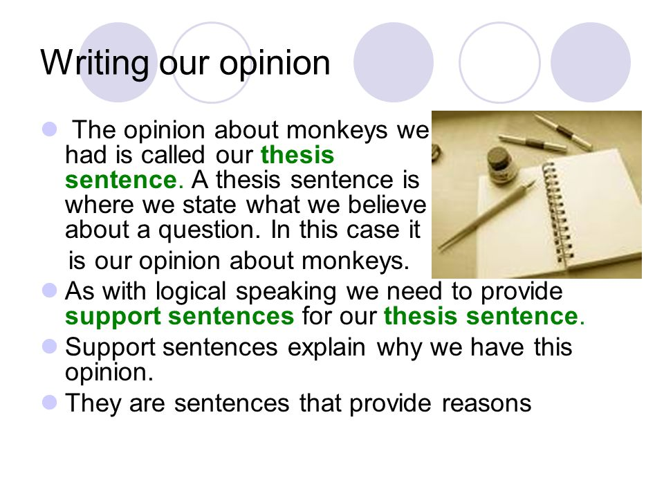 Writing our opinion The opinion about monkeys we had is called our thesis sentence.