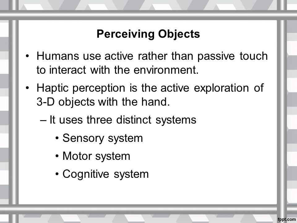 Perceiving Objects Humans use active rather than passive touch to interact with the environment.