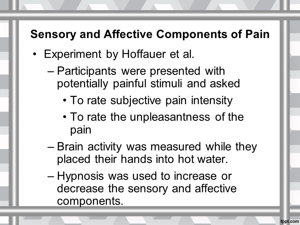 Sensory and Affective Components of Pain Experiment by Hoffauer et al.